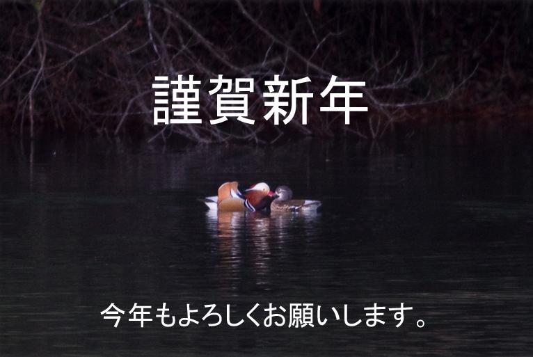 201112042011_12_04_0562